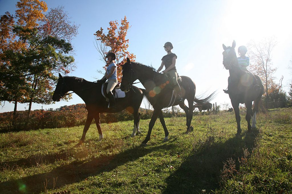 Viewing the fall foliage on horseback.